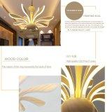 دبي تصميم جديدة يعيش غرفة [لد] عملاقة سقف ثريا
