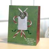 Bolsa de papel, bolsa de papel verde del regalo de la Navidad, bolsa de papel del regalo