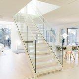 El doble de la Escalera de acero de Stringer / Exterior Escalera recta