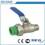 A alta qualidade PPR escolhe a válvula da extremidade
