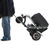 Vespa eléctrica de la movilidad de 350W 48V de litio de la rueda plegable portable de la batería tres (CCET-M1)