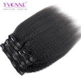 Yvonne Top Ventas en línea recta de Kinky Clip extensiones de cabello humano.