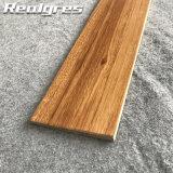 Il legno Petrified gradice le mattonelle di legno