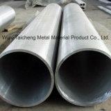 317L/1.4438Bande en acier inoxydable en acier inoxydable / tuyau tube en U