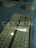 strato della baracca dei 410 304 elevatori decorativi con lo specchio, acquaforte e la linea sottile