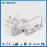 24W 100-240V AC Laptop DC 24V 1A BS Switching Power Adapter