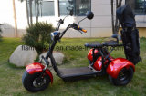1000W Electric Scooter de golfe com 3 rodas