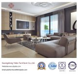 놓이는 거실 가구를 위한 Commerical 호텔 가구 (YB-WS7)