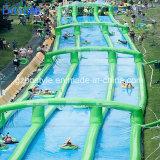 Duplo insufláveis Lane escorregas de água/Slides Urbano