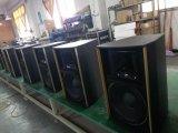 двухсторонний диктор мультимедиа звуковой системы конференции полного диапасона 500W (XT15)