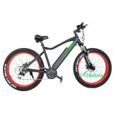 26 인치 전기 자전거 리튬 건전지 전기 자전거