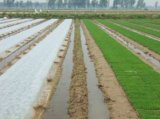 De landbouw Film van de Muls