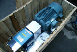 Pompe de pâte de pompe de miel de pompe de lobe de pompe de rotor de came