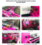 광저우 큰 체재 열전달 압박 롤러 열 승화 기계