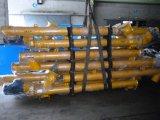 transportband van de Schroef van Sicoma van de Verkoop van 273mm de Hete voor de Silo's van het Cement