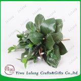 46x35cm Green Bean Artificial pétalo Hojas Hojas artificiales de Phalaenopsis
