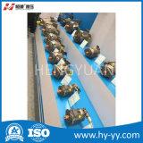 zuiger pomp, de zuigerpomp van de drukcontrole geschikt voor industriële machines