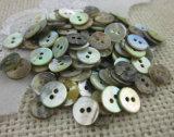 Natureza de alta qualidade Botão Shell Agoya Japonês