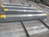 60Т-200t электронные Мостовые весы погрузчик шкалы