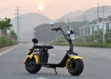 高品質EEC及びCoc公認の電気Harleyのスクーター都市ココヤシ