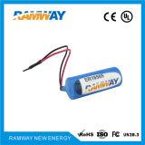 Bateria de lítio com UL, Ce, RoHS para o escape Dectector do pneu (ER18505)