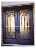 Самомоднейшие и просто двери обеспеченностью ковки чугуна