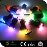 Wedding&Christmas屋外の装飾的なストリングライト10m 100 LEDs