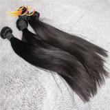 Extensión brasileña del pelo humano 100% Remy de la armadura del pelo de la Virgen