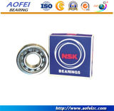 A&F Manufacturer 공급은 OEM Bearing 바늘 방위 Retainer HK3012를 가진 Drawn Cup Needle 롤러 베어링을 연다 End