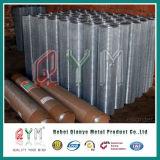Rete metallica saldata comitato saldata galvanizzata della rete metallica Rolls