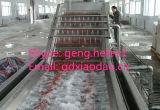 Fruit en de Plantaardige Wasmachine van het Ozon/Schoonmakende Machine