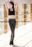 Износ Yogo; Кальсоны для женщины, гетры гимнастики, Sportswear