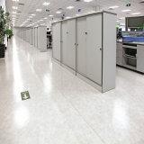 경제 주문 설계한다 PVC 방수 박층으로 이루어지는 마루를 일 수 있다