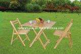 Hölzerne Tabelle und Stuhl (KTD-S914 912CH-W)