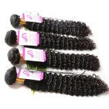 Capelli malesi superiori del Virgin #4/30 7A estensioni non trattate dei capelli di Ombre dei capelli del Virgin del corpo dei 4 gruppi dell'onda del tessuto malese dei capelli umani