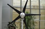 300W Wind Turbine/Wind Generator/Windmill (J-300H)