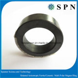 堅い亜鉄酸塩の磁石はステップ・モータのために焼結した