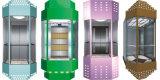 Half-Round тип лифт замечания с польностью стеклянной кабиной