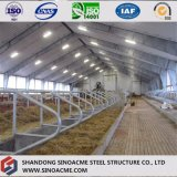 Armazém claro Prefab da construção de aço para a produção animal