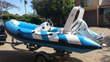 Aqualand 14feet 4.2mの肋骨の漁船か堅く膨脹可能なモーターボート(RIB420B)