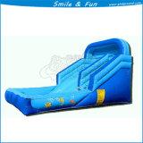 Kid jugar inflables Atracciones Parque Acuático agua pequeño Slider