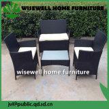 PE Rotin mobilier de jardin Meubles de jardin Set (lxh-012)