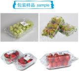 In China-niedrige Kosten-Kissen-Verpackmaschine für Erdbeere bilden