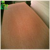 4 ' madera contrachapada comercial del álamo de *8' 6/9/12/15/18m m/de la chapa de Sapele de la base de Enculytus con el pegamento E0/E1 para los muebles