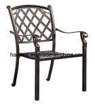 옥외 /Rattan/정원은/안뜰/호텔 가구 주조 알루미늄 의자 & 테이블 놓았다 (HS 3196C &HS 7132DT)