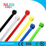 De vrije levering voor doorverkoop van de kabelbanden van Steekproeven Nylon direct van fabrikant