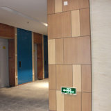 Los paneles decorativos del grano del compacto de la pared de madera del laminado