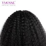 普及したアフリカの自然なヘアラインが付いている巻き毛のレースの前部かつら