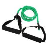 لياقة تجهيز اللون الأخضر يعصب مقاومة أنابيب تمرين بدنيّ تمرين عمليّ نظام يوغا تدريب