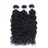 安く深く巻き毛のバージンのRemyの人間のブラジルの毛は編む